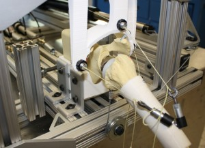Validation of the system using surrogate Sawbones™